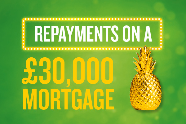 repayments-on-30000