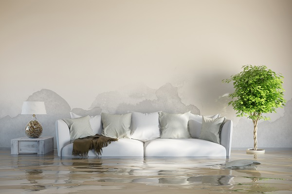 Flooded house image